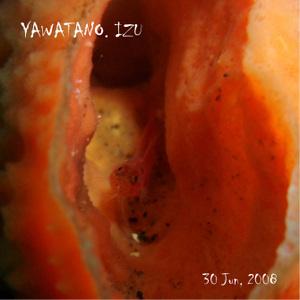 Yawatano