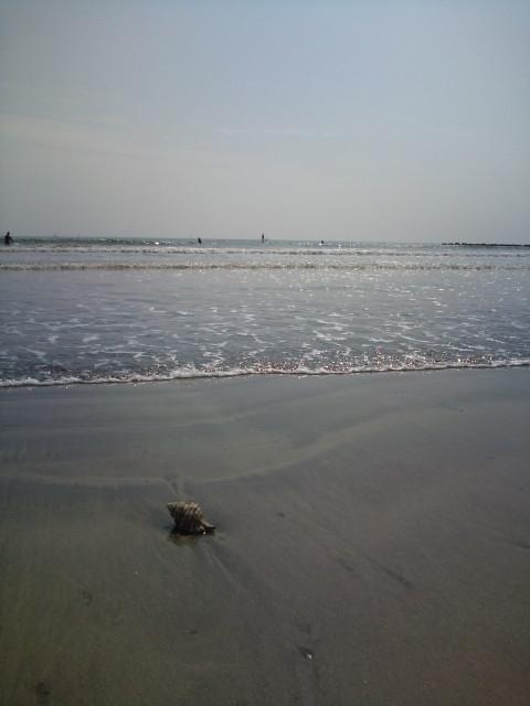 今日の由比ヶ浜